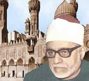 Picture of Gad al-Haq Ali Gad al-Haq